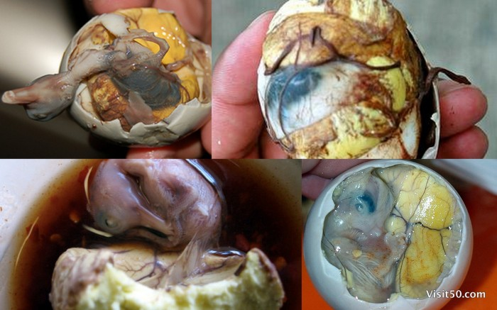 Philippines' Balut egg - duck embryo is common. You can see the Duck Fetus - Visit50.com
